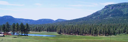 Aspen Country Realty